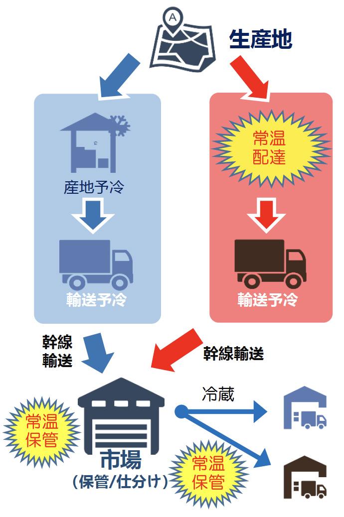 生産地から市場(保管/仕分け)への輸送例の図